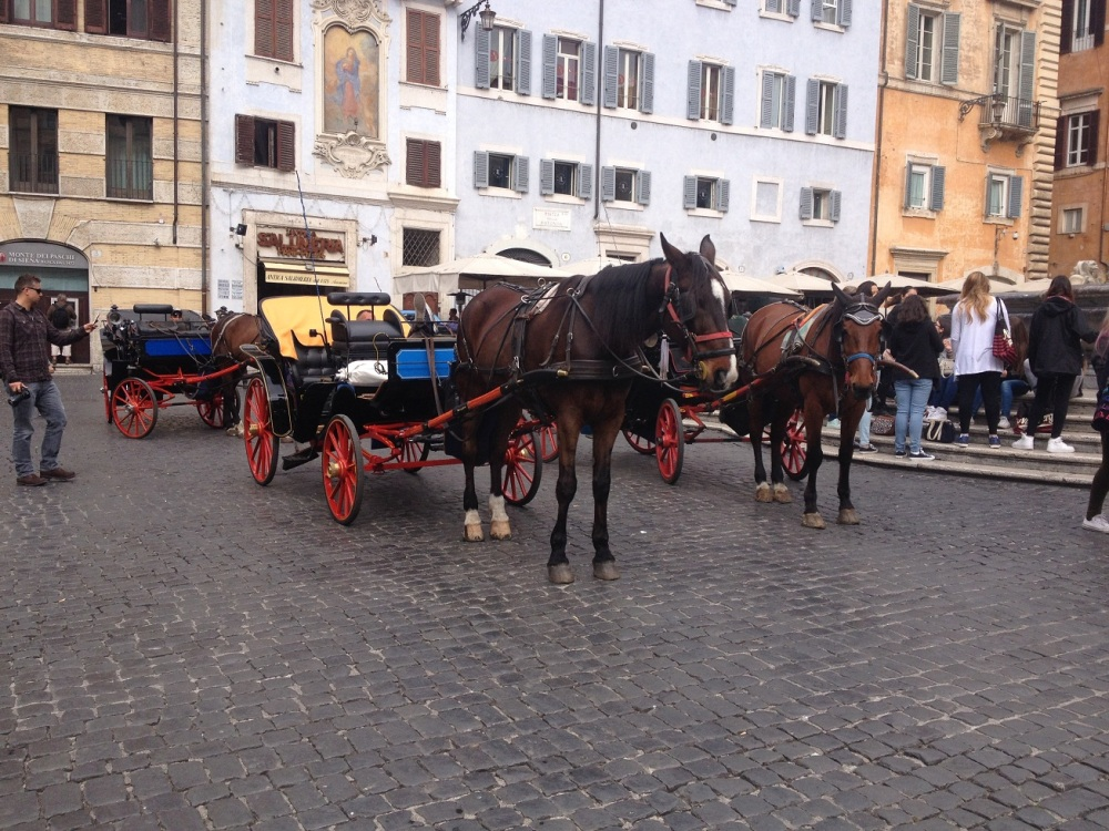 du lich rome 9